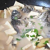 初秋养生汤——鲫鱼豆腐汤的做法图解7