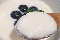 #憋在家里吃什么#蓝莓双皮奶的做法