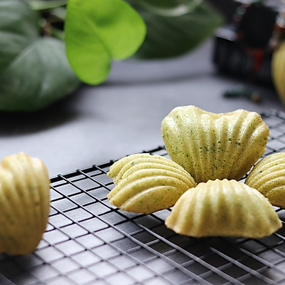 菠菜貝殼蛋糕