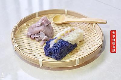 香芋酱糯米饭 • 春季乡野的味道(四)