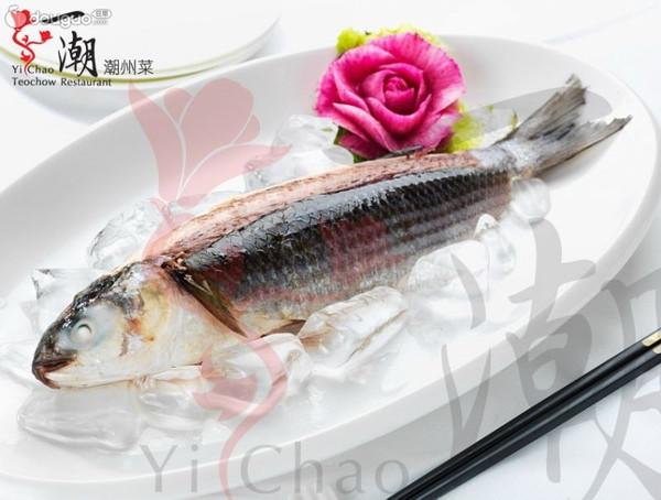 一潮潮州菜之潮汕冻乌鱼的做法