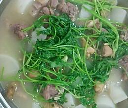 鲜羊肉火锅的做法