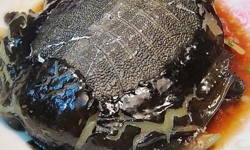 豉汁甲鱼的做法