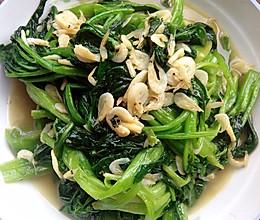 菠菜炒虾皮的做法