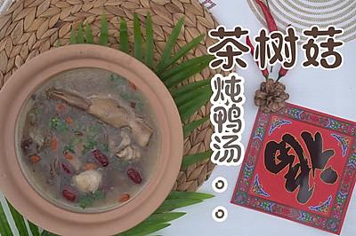 茶树菇炖鸭汤