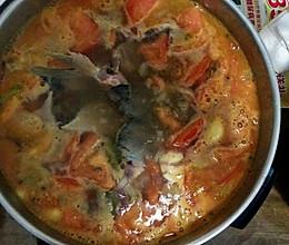 西红柿鱼火锅的做法