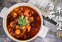 番茄牛腩煲:酸甜开胃又营养的做法