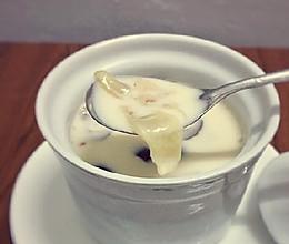 花胶炖牛奶的做法