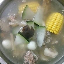 猪尾冬瓜汤