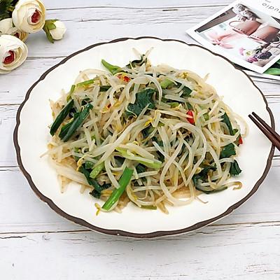 美味家常菜-韭菜炒豆芽
