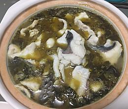 老坛酸菜鱼片的做法
