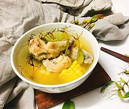 石橄榄鸡汤的做法