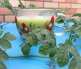 #秋天怎么吃#清热解毒苦瓜汁的做法