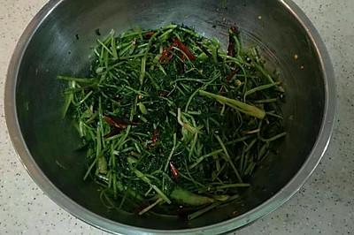 东北腌香菜
