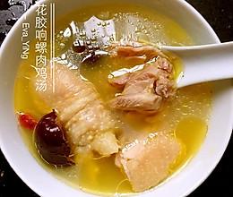 花胶响螺鸡汤的做法
