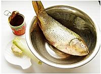 糖醋鱼的做法图解1