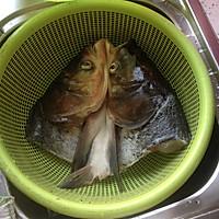 清炖鱼头(奶汤版)的做法图解1
