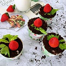 草莓盆栽蛋糕