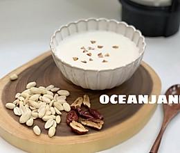 清甜花生红枣米浆,你绝对会回味的做法