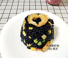 #做道懒人菜,轻松享假期#乌米饭炒饭(附自制乌饭汁)的做法