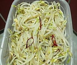 腌绿豆芽的做法