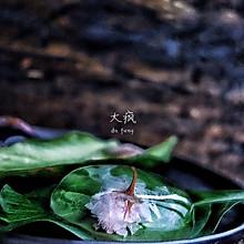 樱花信玄饼
