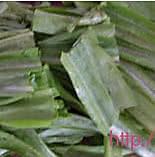豆豉鲮鱼油麦菜的做法图解1