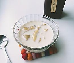 牛奶炖花胶#月子餐吃出第二春#的做法