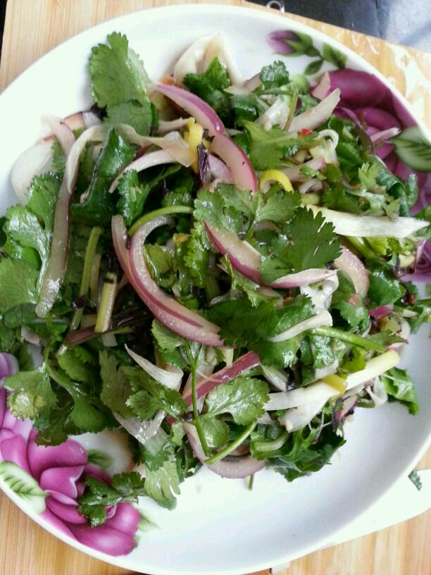 紫苏可以凉拌_凉拌老虎菜怎么做_凉拌老虎菜的做法_豆果美食
