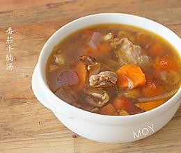 九阳电炖锅——番茄牛肉汤的做法
