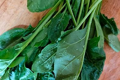 菠菜雙色花卷