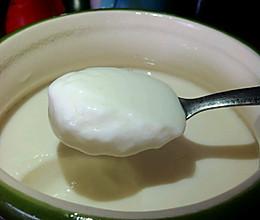 (不需要酸奶机电饭锅)在家也能轻松做老酸奶的做法