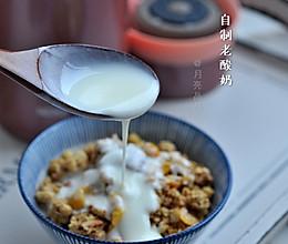 国庆中秋吃吃吃你长了几斤肉,自制一杯老酸奶清清肠的做法
