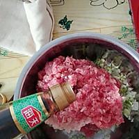 孩子爱吃的炸猪肉丸子的做法图解7