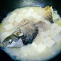 鲤鱼豆腐汤的做法图解9
