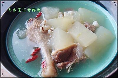 夏天必备 冬瓜薏仁老鸭汤