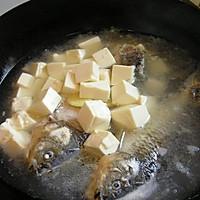 奶白色的鲫鱼豆腐汤的做法图解5