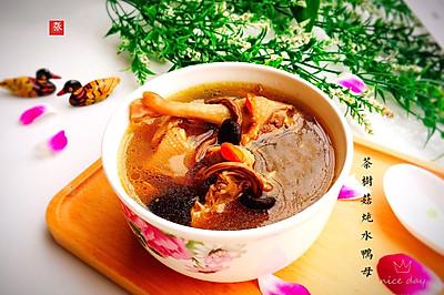 #精品菜谱挑战赛#养生汤+茶树菇炖水鸭母