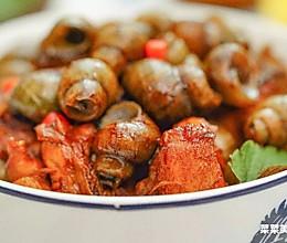 紫苏石螺焖鸡丨美味香气的做法