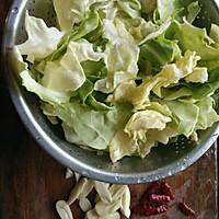 炝炒圆白菜~开胃菜的做法图解1