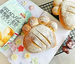 #爱好组-高筋#熊掌奶酪面包的做法