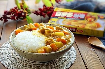土豆鸡腿日式咖喱饭