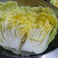 韩国泡菜的秘密【自制辣白菜】正宗发酵蜜桃爱营养师私厨的做法图解8