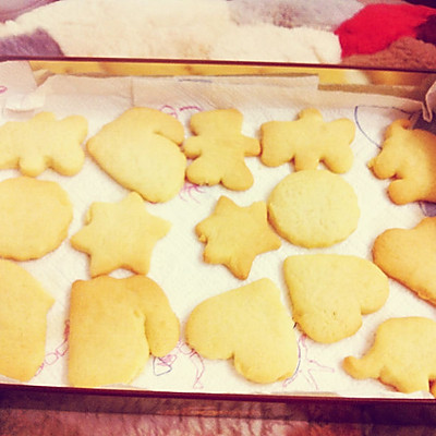 萌萌的动物小饼干