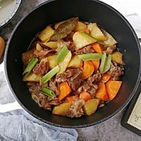 #父亲节,给老爸做道菜#胡萝卜土豆炖牛腩的做法图解15