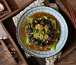 珍珠菇趴油菜的做法