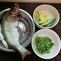 炝锅岛子鱼的做法图解2