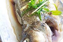 【低热量】清蒸鲈鱼的做法