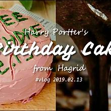 哈利波特生日蛋糕