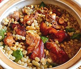 砂锅黄豆焖猪蹄的做法